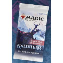 MTG : Booster Set Kaldheim FR