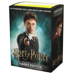 Protège-cartes WB Matte: WizardingWorld Harry Potter